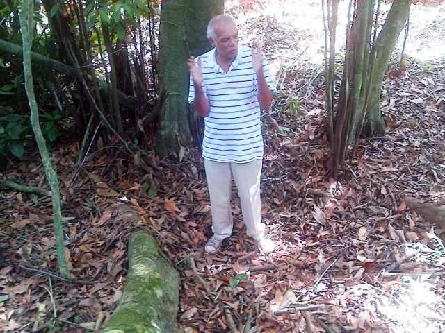 This man is a walking encyclopaedia  on Jamaican history, culture and environment. I kid you not!