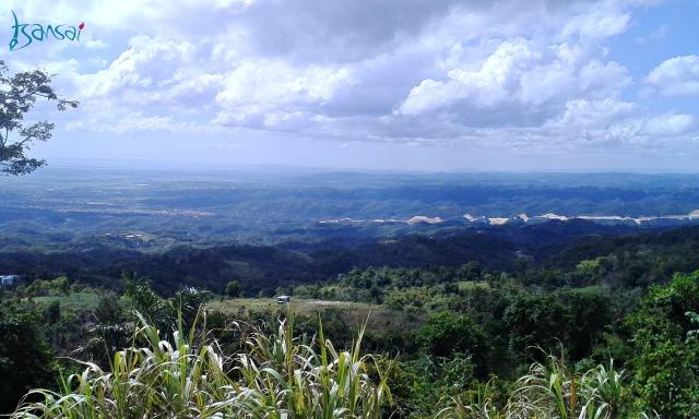 Sligoville-Baptist-Jamaica-view