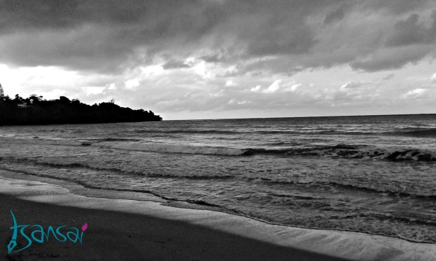 Gibraltar-Bay-Beach-Saint-Mary-Jamaica-Turtle-Project