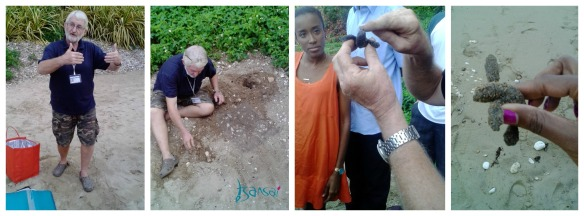Hawksbill-Turtle-Project-NEPA-Mel-Tennant-Jamaica