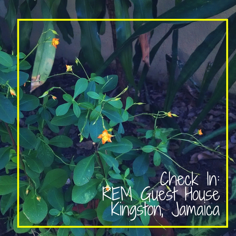 Check In- REM Guest House-Kingston- Jamaica