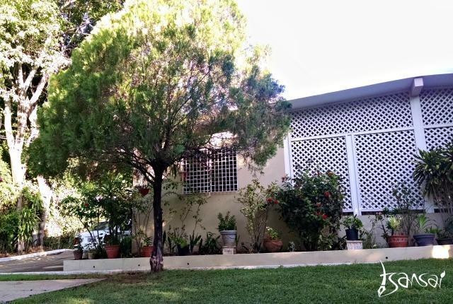 REM-8-Guesthouse-Kingston-Jamaica